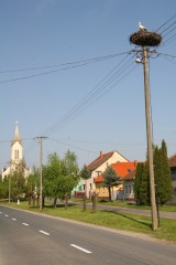 Village Life in Hungary