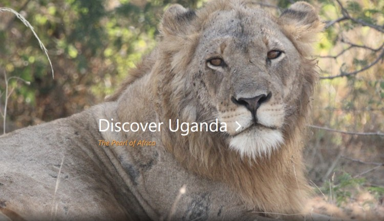 Ellinington Safaris in Uganda